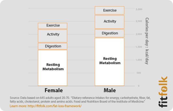 an essay on metabolism and metabolic rate Metabolic rate , also referred to as the basal metabolic rate (bmr) or the resting metabolic rate (rmr) is the rate at which the body spends energy to maintain the basic functioning of the vital organs of the body.