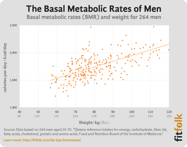 Average Basal Energy Expenditure Bee Basal Metabolic Rate Bmr